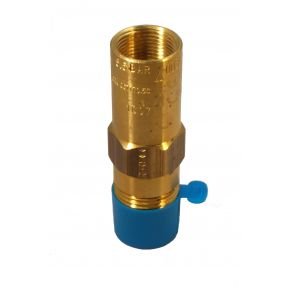 "1/2"" NPT Settings to 450 PSIG  PTFE Seat - PRV9434T450"